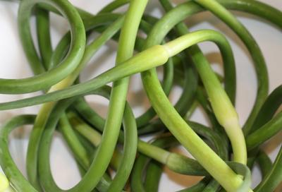garlicscapes713
