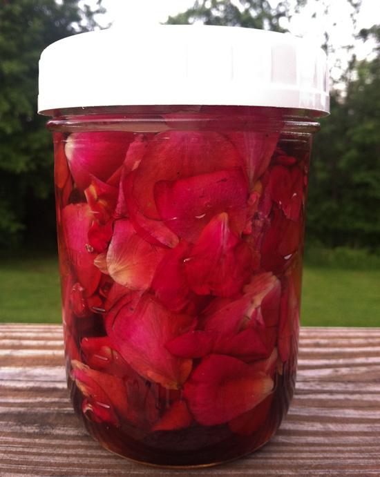 Rose Petal Elixir from www.healthygreenkitchen.com