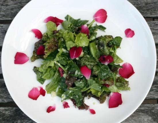saladtop