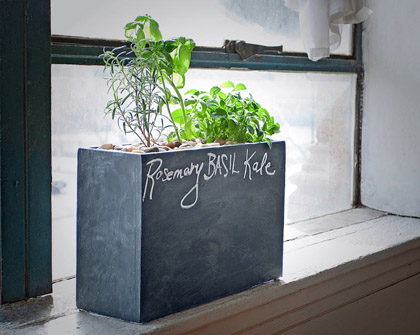 Chalkboard Modern Sprout Planter