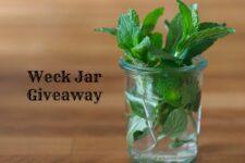 Weck jar giveaway from www.healthygreenkitchen.com
