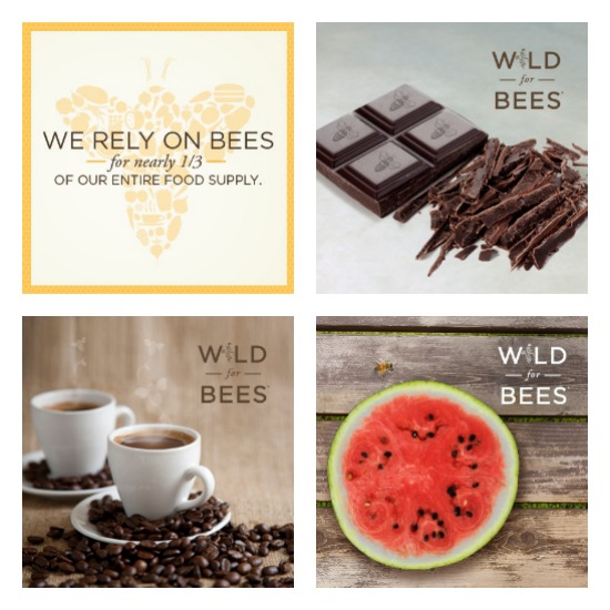 Wild For Bees Campaign | Healthy Green Kitchen