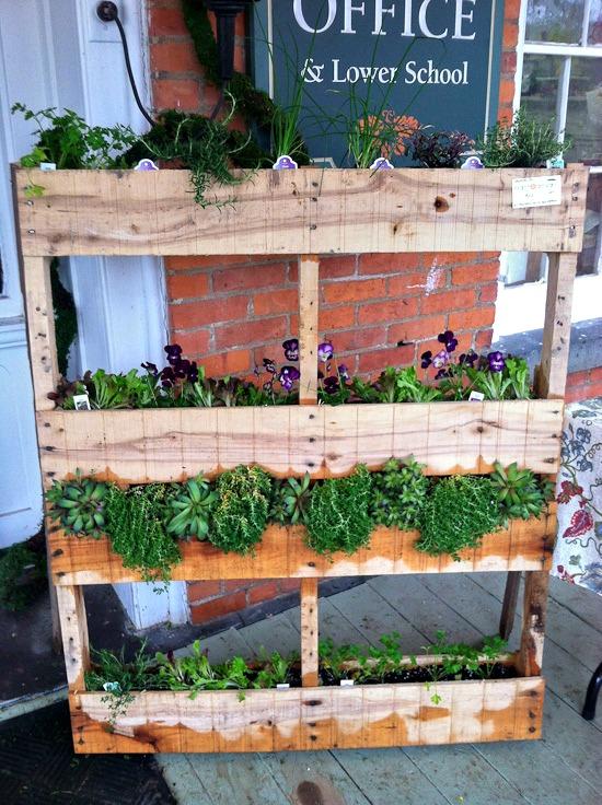 pallet garden | healthy green kitchen
