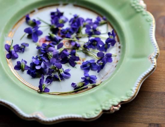 violets  on plate_