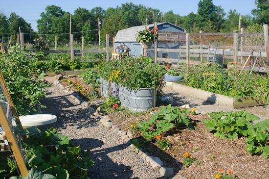 garden in bloom 2