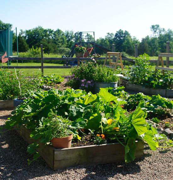 garden lead photo