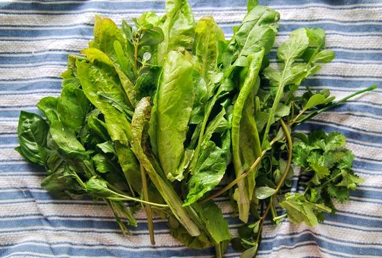 greens | healthy green kitchen