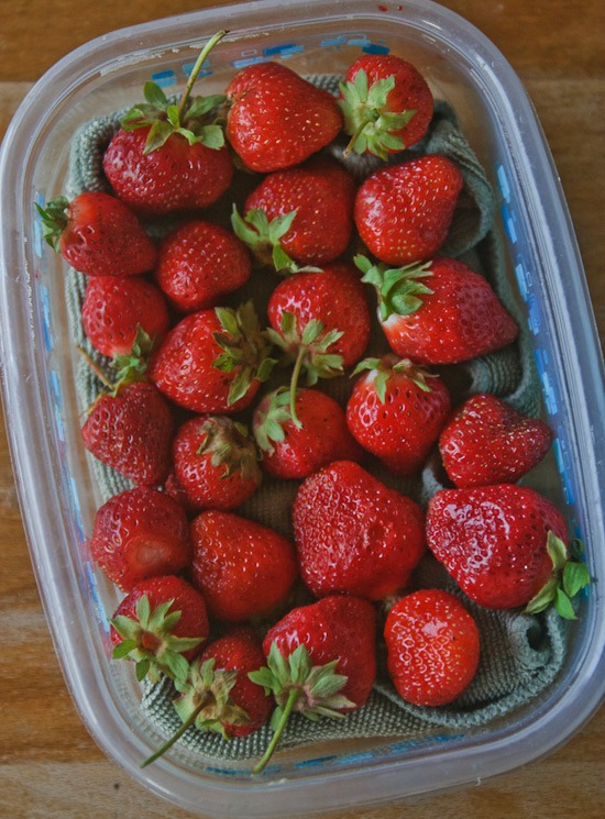 protecting strawberries | healthy green kitchen