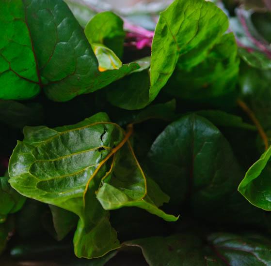chard | healthy green kitchen