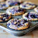 muffins 1_